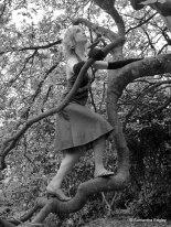 Kate climbing a tree